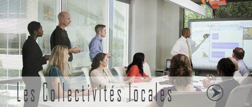 Renseignement sur les collectivités locales